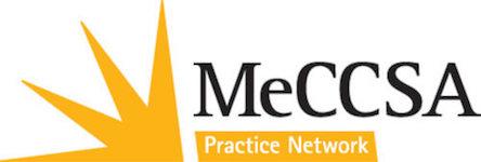 MeCCSA-NetLogo